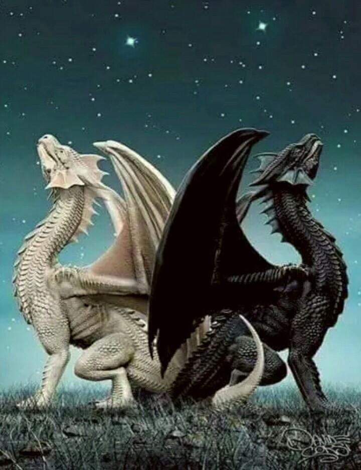 Dragon Paintings N002