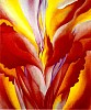 Keeffe Paintings