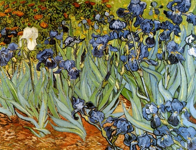 Van Gogh Paintings N006