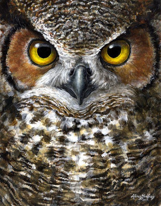 Owl Paintings N005
