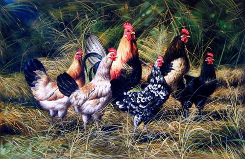 Chook Paintings 01