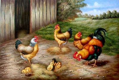 Chook Paintings N006