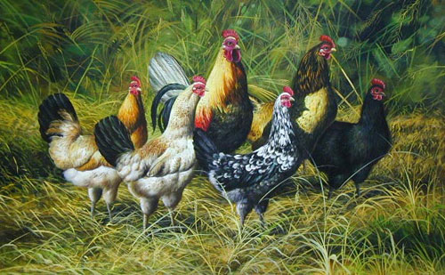 Chook Paintings N004
