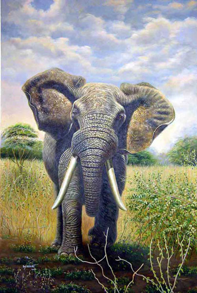 Elephant Paintings for Sale