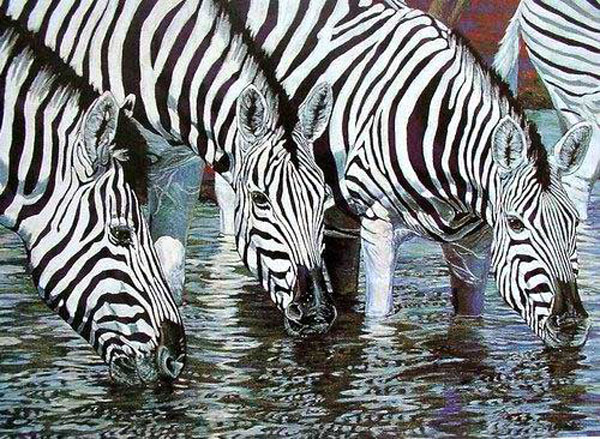 Zebra Paintings for Sale
