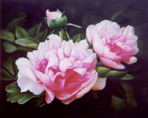 Flower Paintings N003