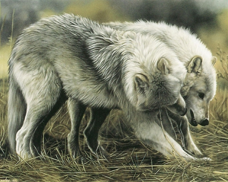 Wolf Paintings for Sale