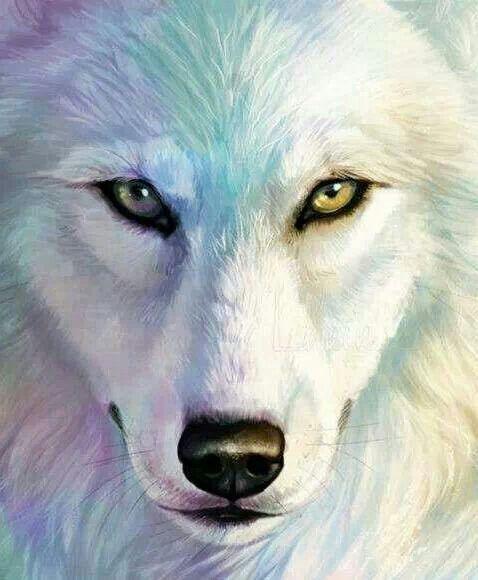 Wolf Paintings N001