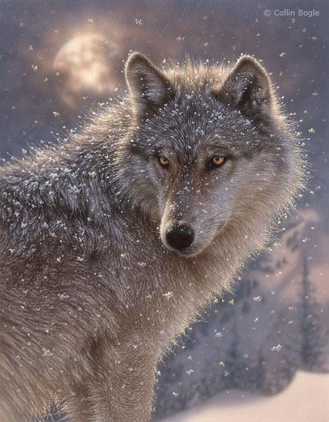 Wolf Paintings N006